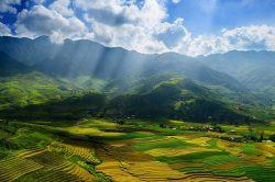 Rayons de soleil sur les champs de Bac Ha