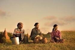 Echappée au vert à Bagan