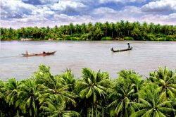 Balade en pirogue à Ben Tre sur fleuve longé de palmiers