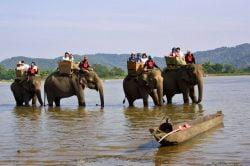 Groupe de touristes sur éléphant en balada dans l'eau
