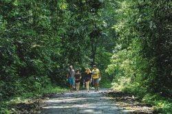 Cuc Phuong Ballade d'une famille dans la forêt