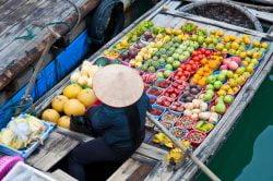 Vendeuse de fruits et légumes dans la baie d'Halong