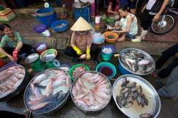 Vendeuse de poisson d'Ho Chi Minh
