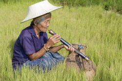 Hmong au Laos en train de fumer