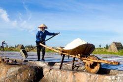 Femmes travaillant dans une rizière immergée
