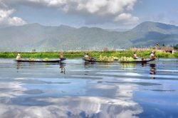 lac inle barques transportant des légumes