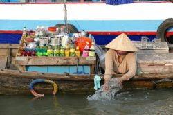 Vendeuse de boissons sur sa barque sur le Mékong