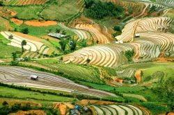 Les rizières en escaliers de Mu Cang Chai