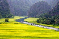 Ninh Binh rivière dans les rizières