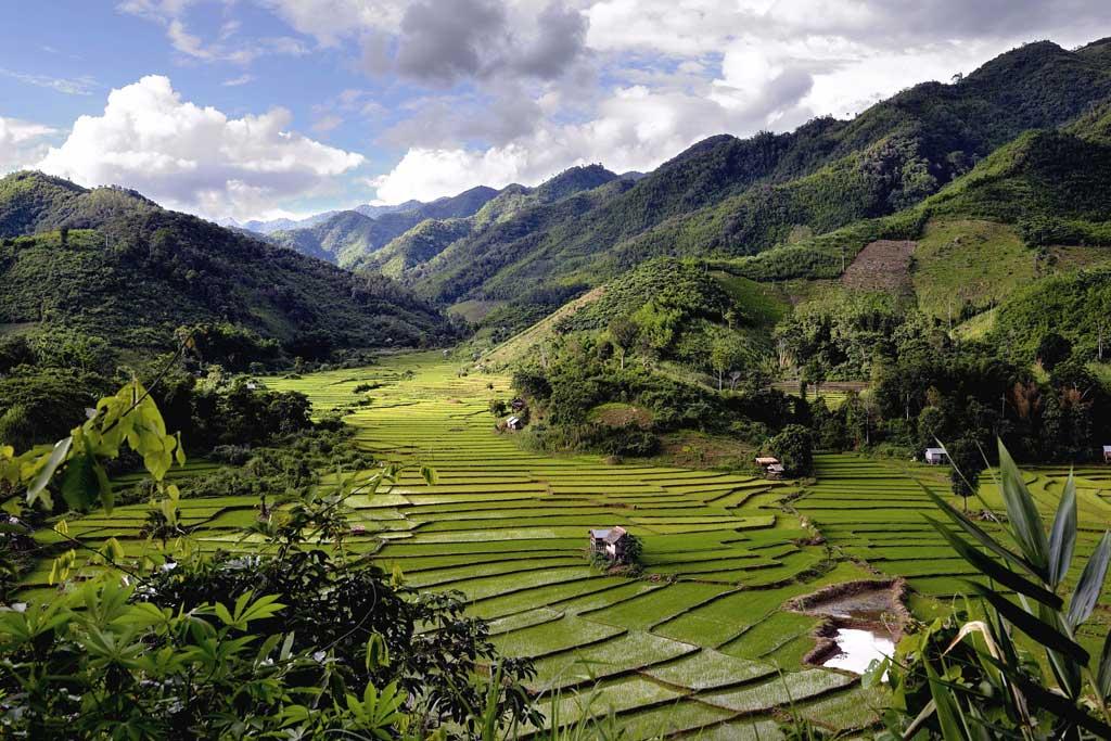 oudomxay rizières en terrasses dans les montagnes