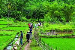 pu luong ballade dans la campagne