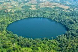 Lac entouré de forêt