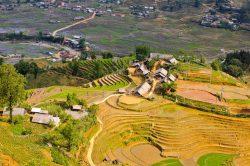 Sapa et ses rizières en terrasse