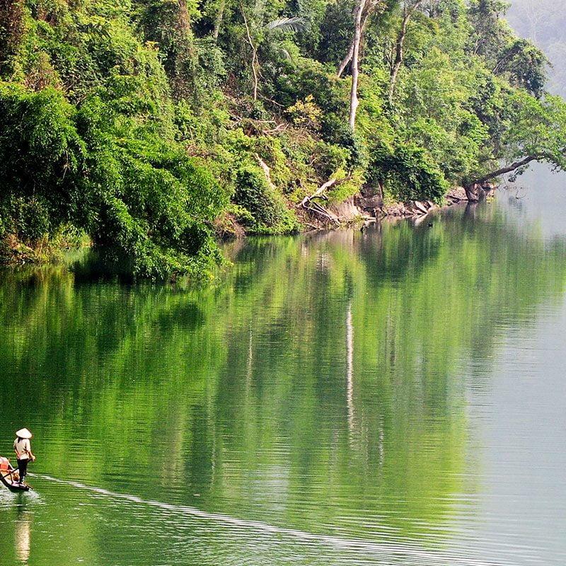 Petite barque solitaire face à la nature verte