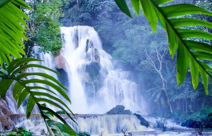 cascades dans la jungle Laos
