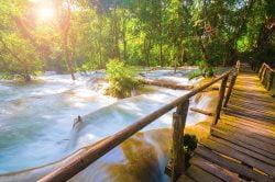 tad sae cascades et pont en bois