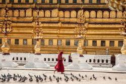 yangon birmanie moine traversant la coure d'un temple