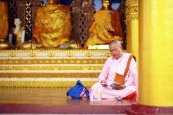 yangon Birmanie moine qui lit dans un temple
