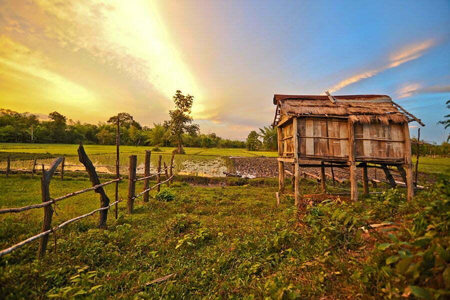 ratanakiri cambodge cabane sur pilotis dans les rizières