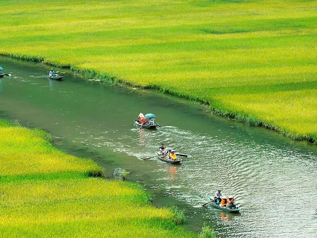 Barques vogant sur un fleuve entre des champs aux teintes vertes et jaunes