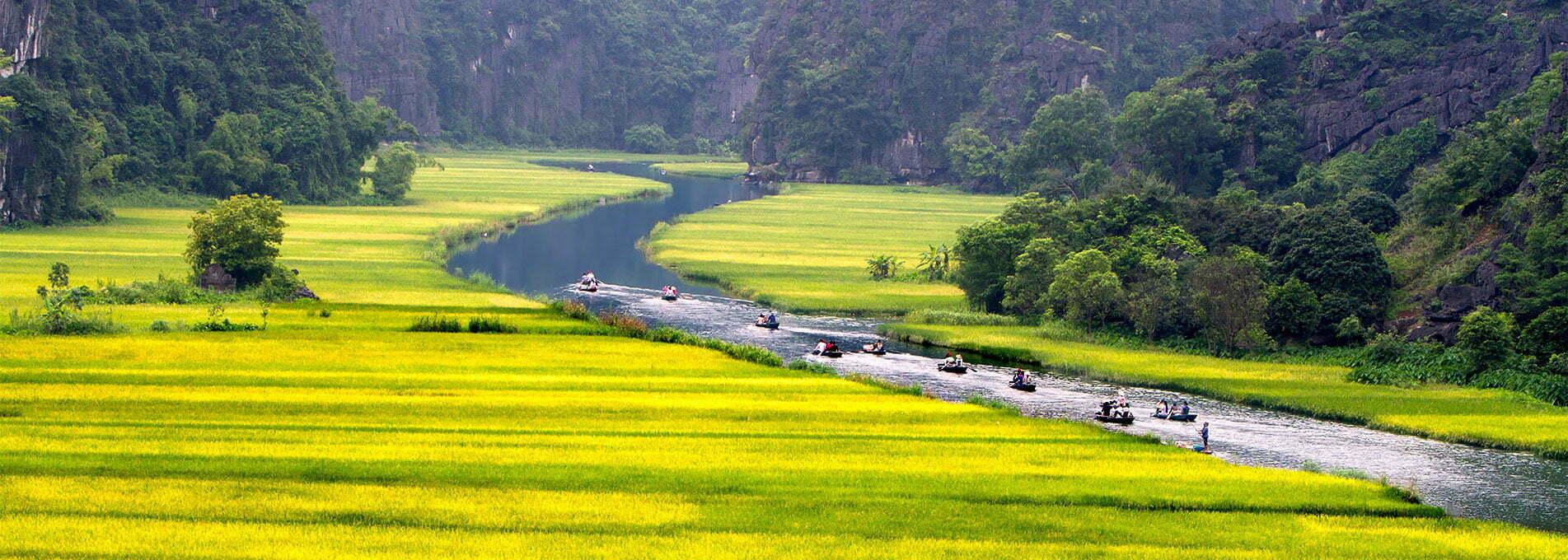 Montagnes, fleuve et champs aux teintes verdoyantes et éclatantes à Ninh Binh