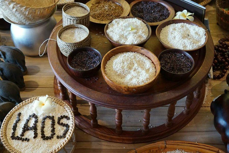 différents types de riz au Laos