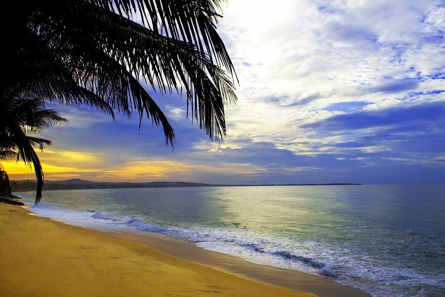 Plage, coucher de soleil et palmier à Muine