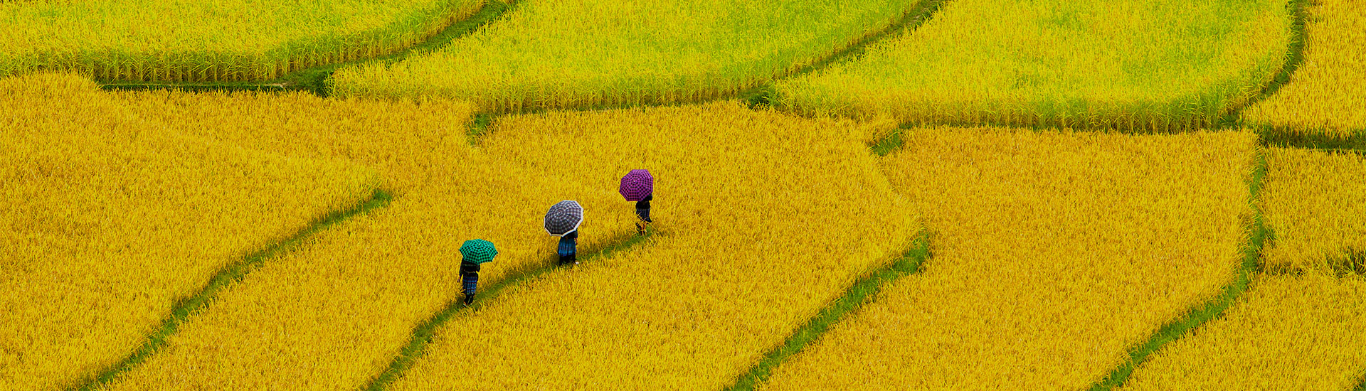 Voyages photos Vietnam
