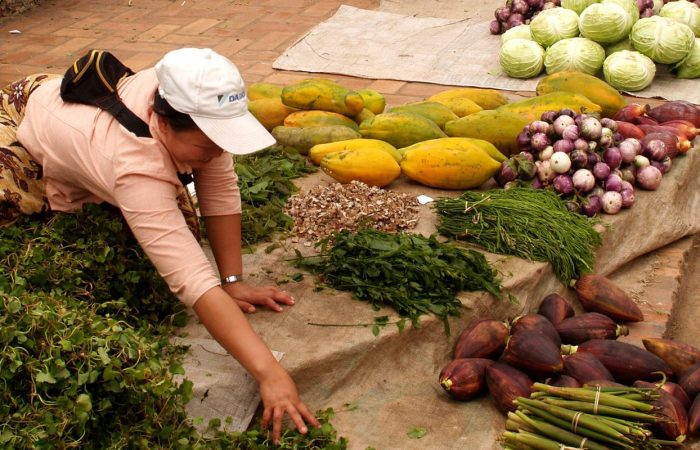 femme vendant des fruits et légumes au Laos