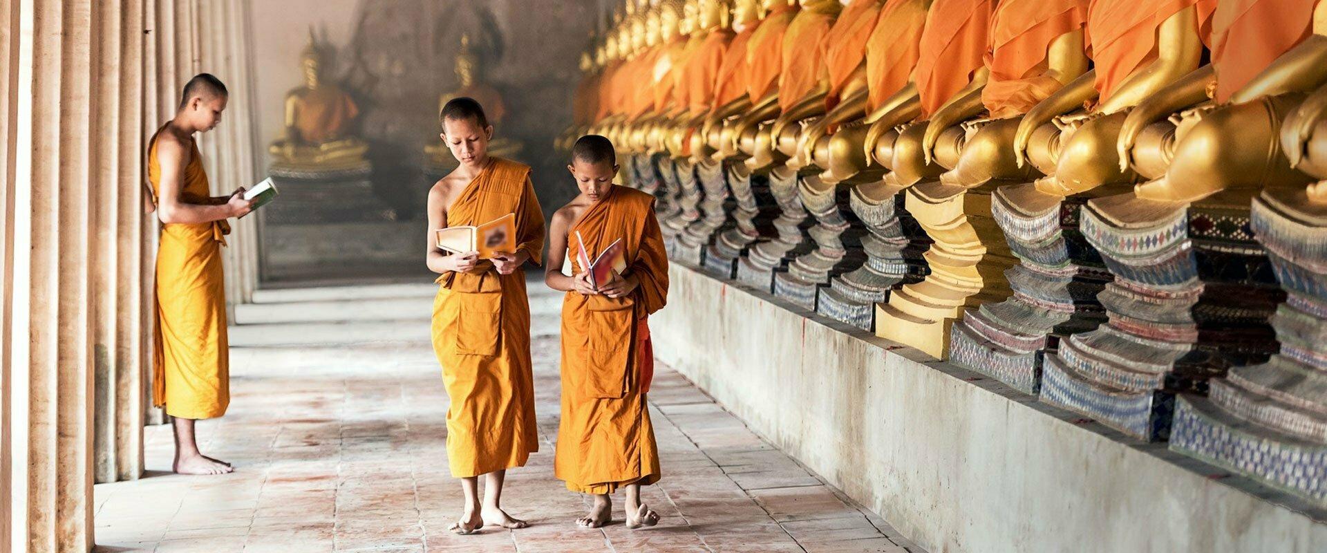 Trois jeunes moines en pleine lecture