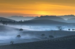 Lever de soleil et brume matinale dans la vallée vietnamienne
