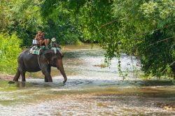 ballade à dos d'éléphant village Lahu Thailande