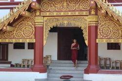 Temple doré et moine