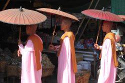 moines tenant des ombrelles birmanie
