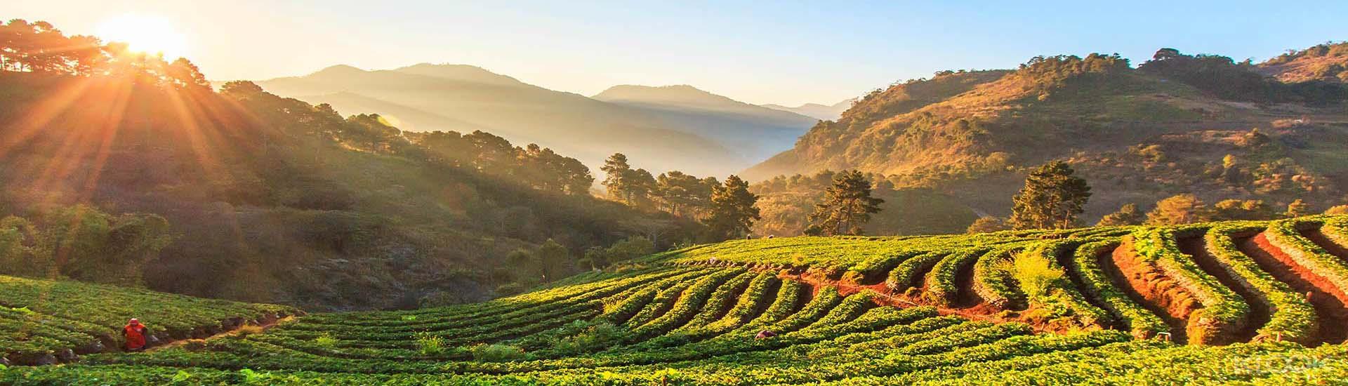 parc national thailande