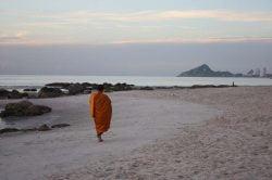 moine sur la plage