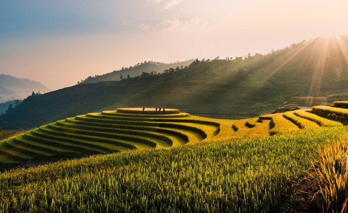 Voyage au Vietnam | Hanoi Voyages